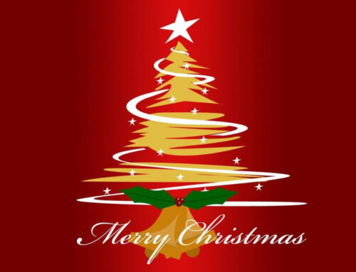 Chiusura per festività natalizie ! A presto :)